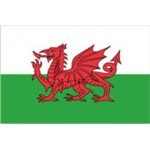 Wales - Welsh Red Dragon Flag (Large) (150x90cm) (5x3ft)