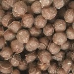 Chewing Nuts (100g) (Best Before: 04.06.19) **NEW**